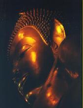 thailand verlaten paaldorp
